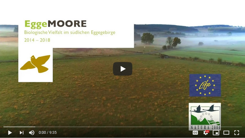 youTube-Video - Die Eggemoore